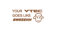 Your vtec goes like bweeeh